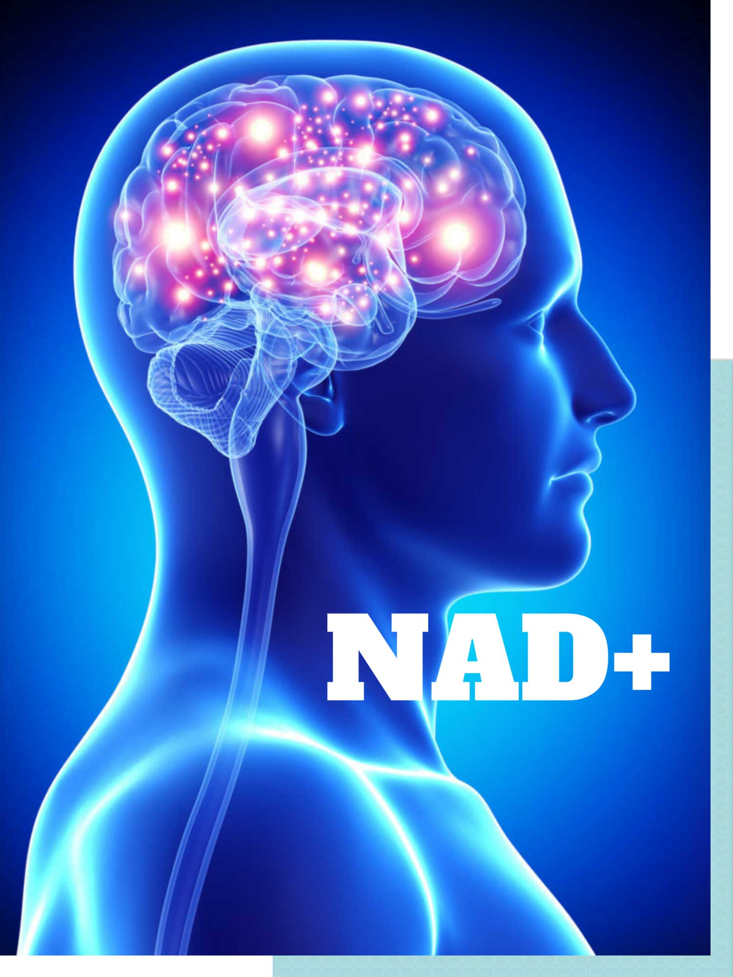 More information about NAD